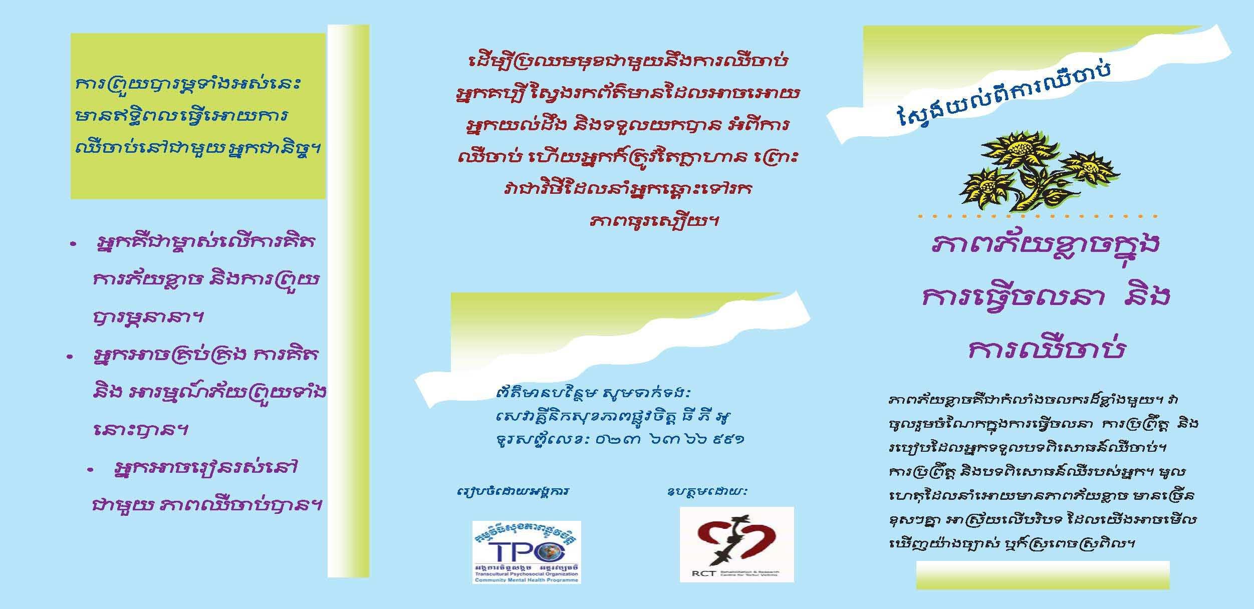 Leaflet-fear and chronic pain-Khmer